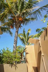 Mozambeat Motel, Hostels  Praia do Tofo - big - 54
