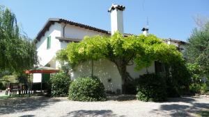 Appartamenti in Villa Shanti - AbcAlberghi.com