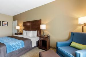 Comfort Inn & Suites Bryant, Hotels  Bryant - big - 9