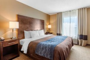 Comfort Inn & Suites Bryant, Hotels  Bryant - big - 7