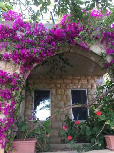 Old Souk Guest House - Jounieh