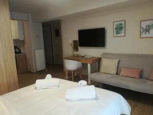 Olympus Residence, Ferienwohnungen  Athen - big - 210