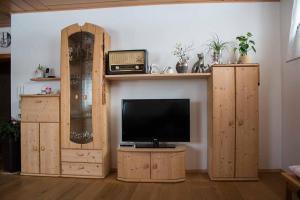 Ferienwohnung Mirtei, Apartmány  Hohenau - big - 11