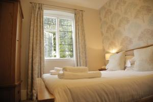 B+B York, Hotels  York - big - 61