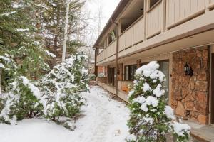 107 Aspen Mountain Rd Condo Unit 1 Condo - Apartment - Aspen