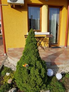 Magnólia Apartman, Ferienwohnungen  Gyula - big - 7