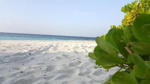 Local Travel Beach, Гостевые дома  Хангнаамеедхоо - big - 26