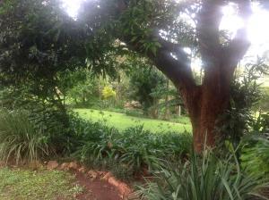 Sommerhus med udsigt til haven