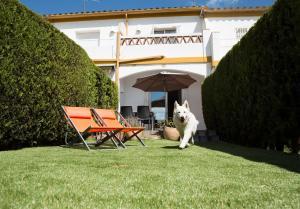 Casas Plus Costa Brava, Ferienhäuser  L'Estartit - big - 17