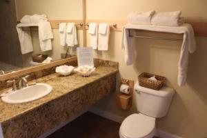King Room with Spa Bath - Non Pet Friendly