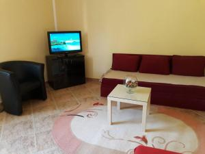 Apartment Dubrava, Appartamenti  Teodo - big - 4
