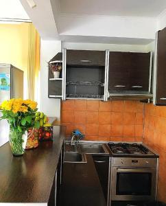 Iulia's Guesthouse, Гостевые дома  Бран - big - 37