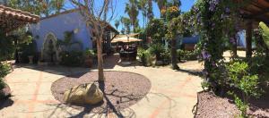El Encanto Inn & Suites, Hotely  San José del Cabo - big - 42