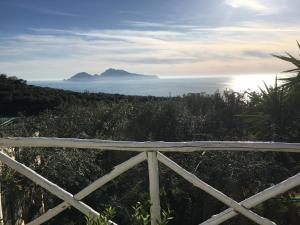 Villa Manu - AbcAlberghi.com