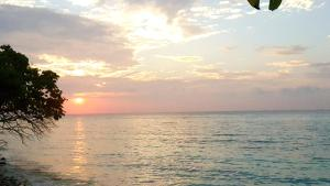 Local Travel Beach, Гостевые дома  Хангнаамеедхоо - big - 51