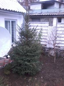 mini-Cottage Ludmila