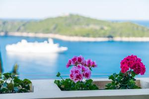 Deluxe Sunset Room, Affittacamere  Dubrovnik - big - 65