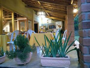 Pousada Boa Vista, Guest houses  Santo Antonio de Itabapoana - big - 54
