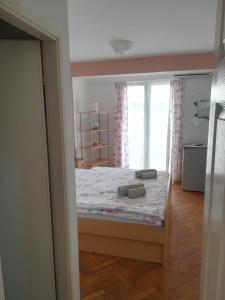 Apartments and Rooms Sara, Vendégházak  Petrčane - big - 17