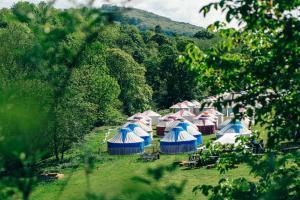 Boutique Luxury Yurts