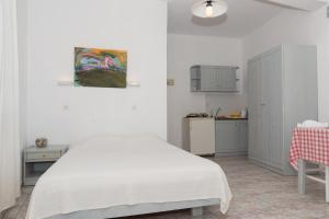 Captain Manos Studio Apartments, Apartments  Grikos - big - 14