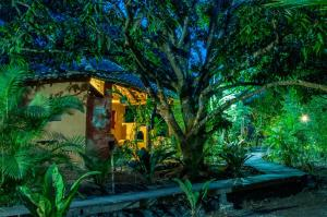 Aldea Ecoturismo, Hotels  Jalcomulco - big - 86