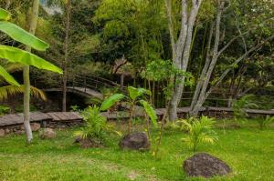 Aldea Ecoturismo, Hotels  Jalcomulco - big - 1