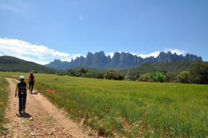 Montserrat La Calsina, Country houses  Monistrol - big - 29