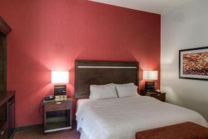 Hampton Inn & Suites Detroit/Airport Romulus, Отели  Ромьюлес - big - 8