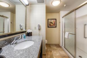 Hampton Inn & Suites Detroit/Airport Romulus, Отели  Ромьюлес - big - 10