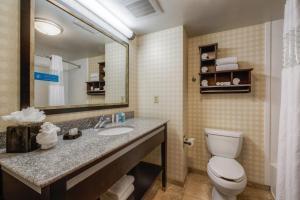 Hampton Inn & Suites Detroit/Airport Romulus, Отели  Ромьюлес - big - 15