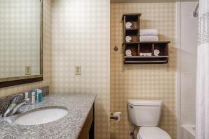 Hampton Inn & Suites Detroit/Airport Romulus, Отели  Ромьюлес - big - 16