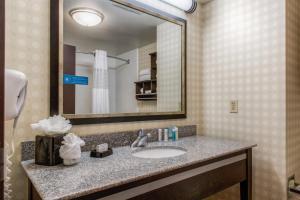 Hampton Inn & Suites Detroit/Airport Romulus, Отели  Ромьюлес - big - 17