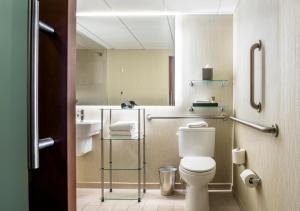 Chambre Lit King-Size pour Personnes à Mobilité Réduite / Douche Accessible en Fauteuil Roulant