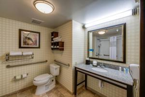 Hampton Inn & Suites Detroit/Airport Romulus, Отели  Ромьюлес - big - 27