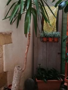 Casa Aladino - AbcAlberghi.com
