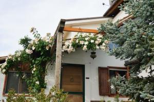 зеленая вилла (villa verde) - AbcAlberghi.com
