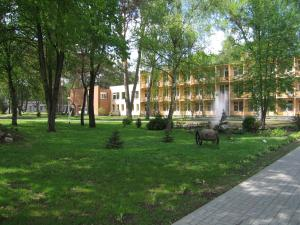 Hotel Dainava, Hotel  Druskininkai - big - 41