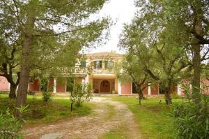 Villa Zante Close to the Sea