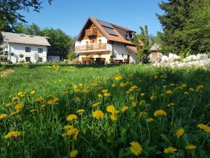 Guesthouse Green Valley, Penzióny  Jezerce - big - 56