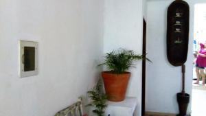 Suites Pouso Familiar José e Maria, Priváty  Paraty - big - 60