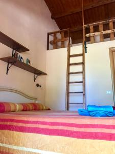 Le Contrade Tropea, Bed and Breakfasts  Brattirò - big - 39