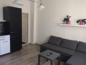 Guestin 2Room Apartment @ Francouzska, Апартаменты  Прага - big - 3