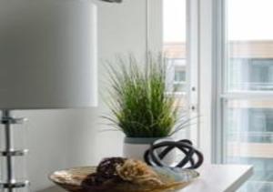 N2N Suites - Downtown City Suite, Ferienwohnungen  Toronto - big - 69