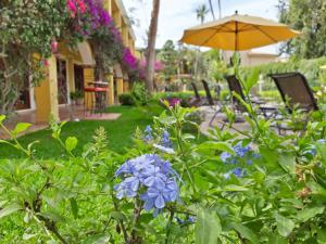 El Encanto Inn & Suites, Hotely  San José del Cabo - big - 49