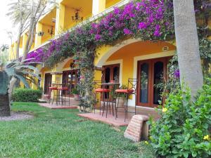 El Encanto Inn & Suites, Hotely  San José del Cabo - big - 54