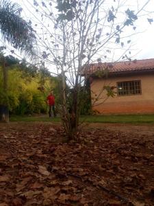 Sítio Pé da Serra, Nyaralók  Cambuí - big - 3