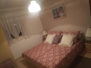 Apartment Vienna, Appartamenti  Drežnik Grad - big - 48