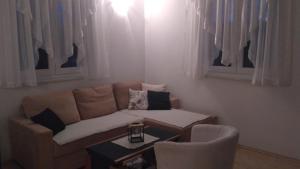 Apartment Vienna, Appartamenti  Drežnik Grad - big - 50