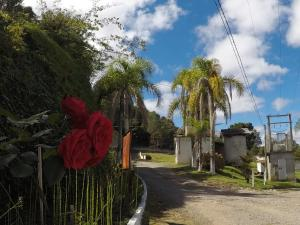 Motel Samuray (Adults Only), Отели для свиданий  Caxias do Sul - big - 15